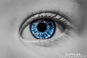 The Watcher by cupplesey