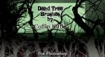 Photoshop Brushes: Dead Trees by coffinkittie
