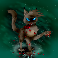 Ashfur Roses and Tears by Night-Feathers-Fire