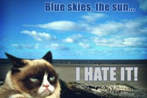 Grumpy Cat loves the sun... not. by Cthulhu1976