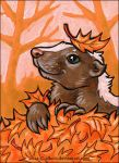 Autumn Skunk by afke11