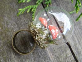 Mini terrarium ring v.2 by kickthebucket