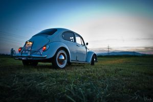 VW Bug by oragreen