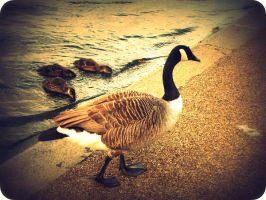 mother goose by an-neo