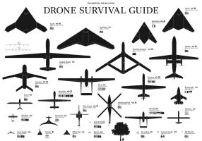Drone Survival Guide by WeiMao