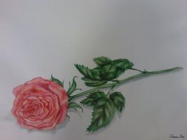 painting: A Rose by Henu96