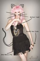 Kitty Cat Accessories by JBaxterPhoto