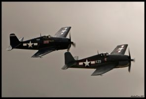 Planes of Fame 15 by AirshowDave