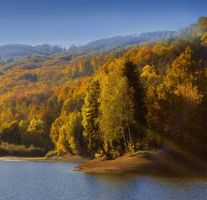 Autumn 2012 by Callu