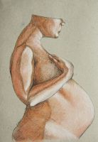 pregnancy 1 by Spangenberg