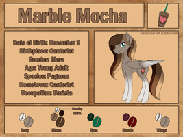 Marble Mocha Reference Sheet by iRaincloud