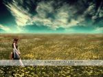 Somewhere Only We Know WP by arhcamt