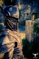 Skyrim Ebony Armor - cosplay photo No. 4 by Folkenstal