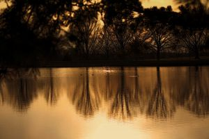 Reflections by jmarie1210