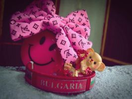 From Bulgaria with Love... by LoveAsia