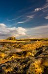 Bamburgh Castle 5 by newcastlemale