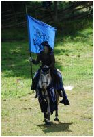 Knight of Camargue IV by Eirian-stock