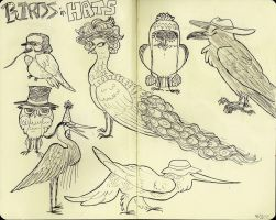 birds in hats by Atherist