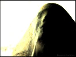the dying bride by scaryjesus