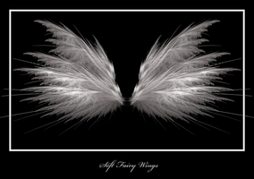 Soft Fairy Wings by Sylverkitti