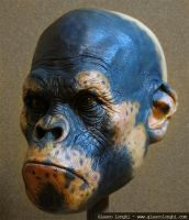 Ape's Head Painted by glaucolonghi