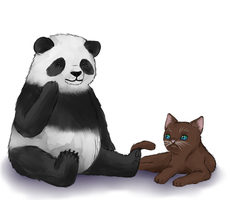 Panda and cat by GriellaAnime