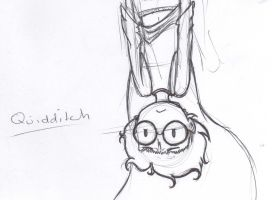 Quidditch Training by ImHereForTheDrarry