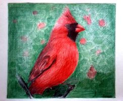 The Red Bird - Ballpoint Pen by srimant