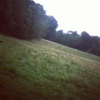 Fields. by LunaPicture