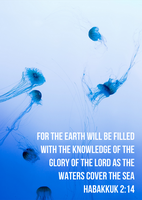 Knowledge of the Glory of the Lord - Habakkuk 2:14 by tylerneyens