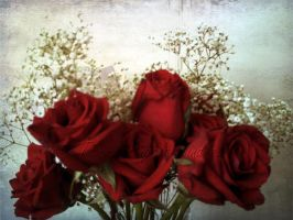 Roses by tammy-angela