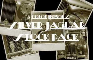 Silver Jaguar Stock Pack by TheLadyAmalthea