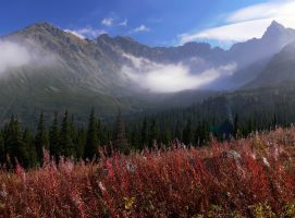 ...in the Tatras 4... by eugi3