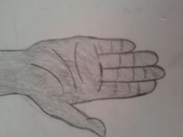 A Human Hand by evamyname13