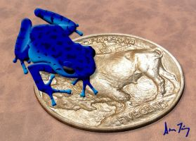Poison Frog Oophaga Pumilio by FauxHead