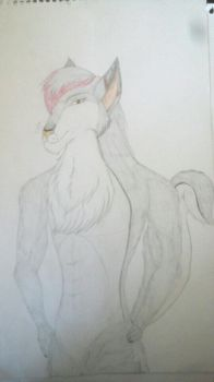 Mauroon the Wolf by CelestialDarkHarvest
