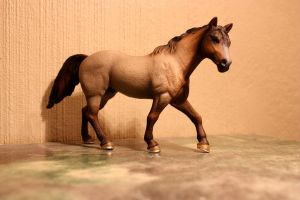 Quarterhorse - Schleich by CrocodileRawk