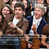 Liam and Niall by CelticThunder113