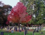 Cemetery in Autumn II by paganchild1974