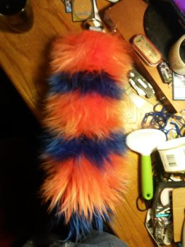 My new tail 2 by TimidClef