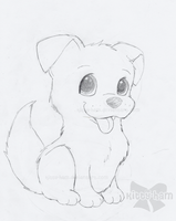 Puppy Sketch by Kitty-Ham