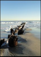 Old Posts on the Beach by nemesisenforcer