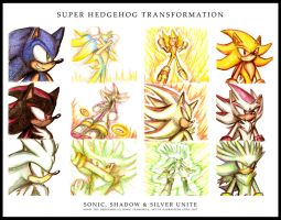 Super Hedgehog Transformation by darkspeeds