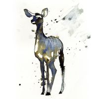 InkAnimals - Kudu by Duffzilla