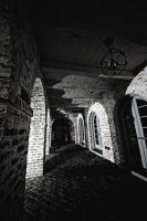 Gothic Background Hallway by SavageLandPictures