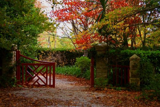 The gate to Autumn by lewis60