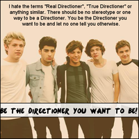 Be The Directioner You Want To Be by iluvlouis
