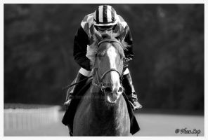 Black and white world of racing by Desirestar