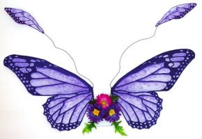 Purple Monarch Fairy Wings by customfairywings