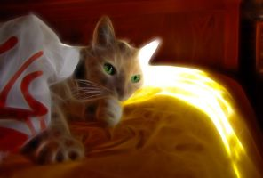 Simply my cat by digitalminded